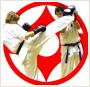 Karate Kyokushin Bydgoszcz