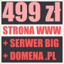 Strona Internetowa już od 499 zł