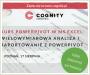 Kurs PowerPivot w MS Excel: wielowymiarowa analiza i raportowanie