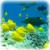 Ogłoszenia drobne Wyszków fauna i flora